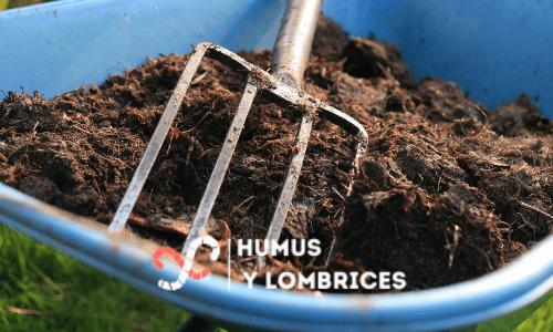 plantas con compost de lombriz