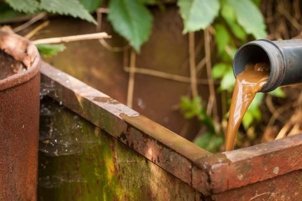 Té de compost aplicado a las plantas