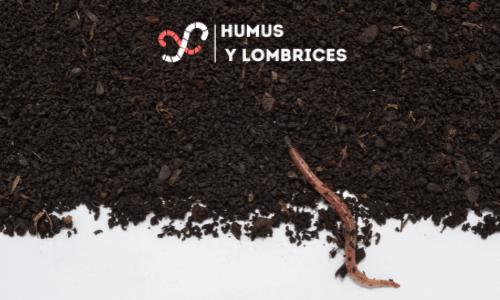 beneficios del humus de lombriz