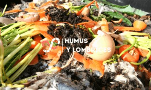 cuánto alimentar a tus lombrices