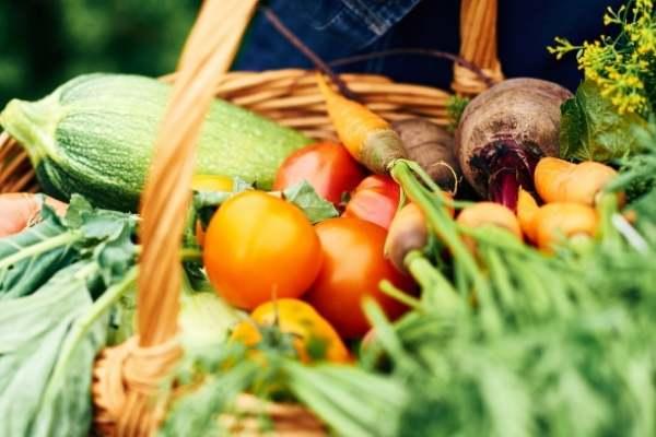 Cosecha tus alimentos utilizando compost de lombriz